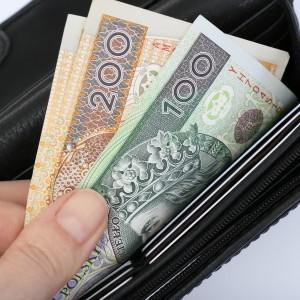 pienidze, monety, pln, polska, grosze, zotwki, portfel